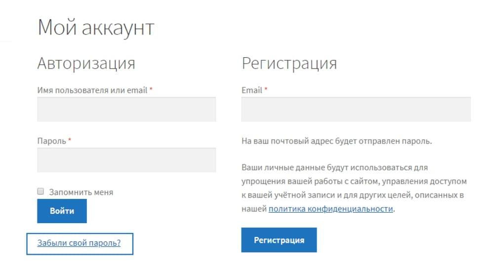 Смена пароля личного кабинета на сайте Грифель - фото 1